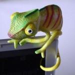 Хамелеон. Псевдо запрос браузера